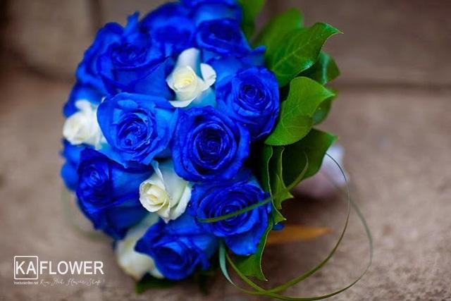 Tặng hoa hồng xanh có ý nghĩa gì ?
