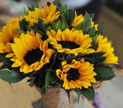 lợi ích của việc đặt hoa tươi trong phòng làm việc