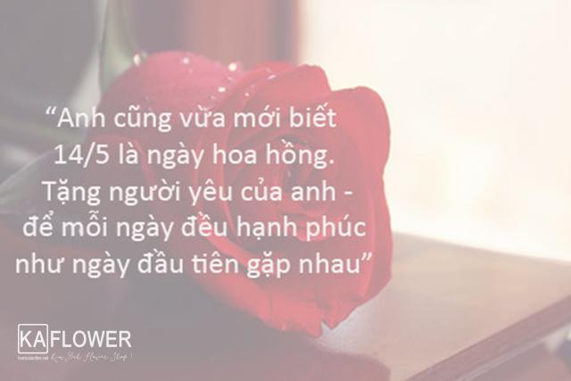 ngày của hoa hồng tình yêu
