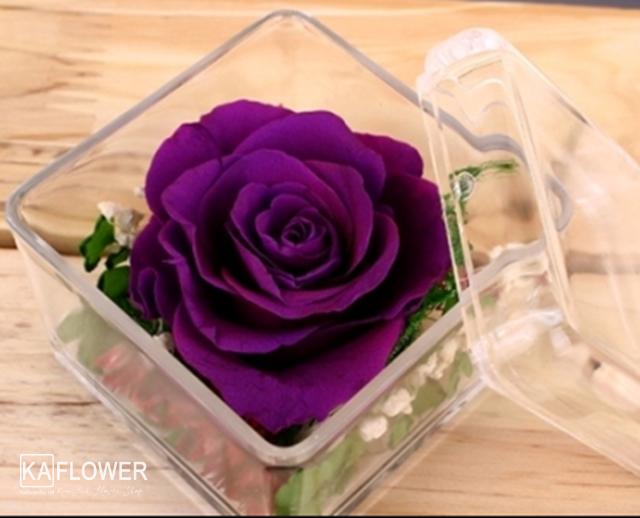 hoa hồng sinh nhật màu tím