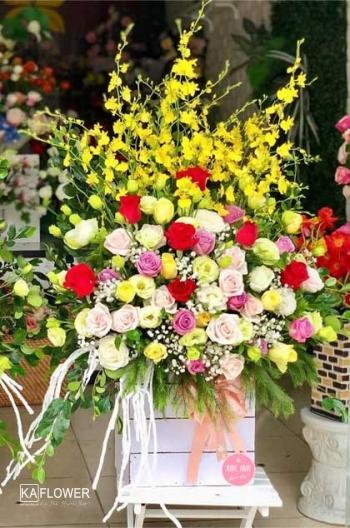 ảnh hoa ngày 20 tháng 10