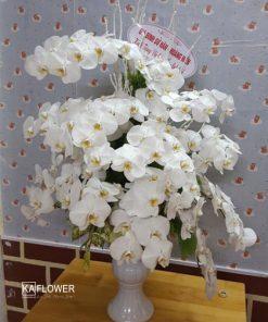 lẵng hoa đẹp chúc mừng sinh nhật,