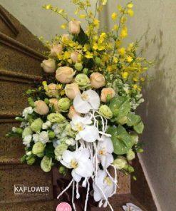 hình ảnh hoa ngày 20 tháng 10