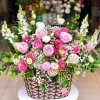 hoa mừng 20 tháng 10