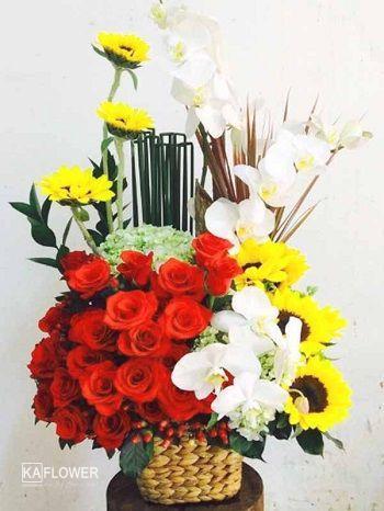 Dien hoa hoa thanh tay ninh