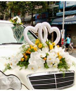 Hoa xe cưới 5